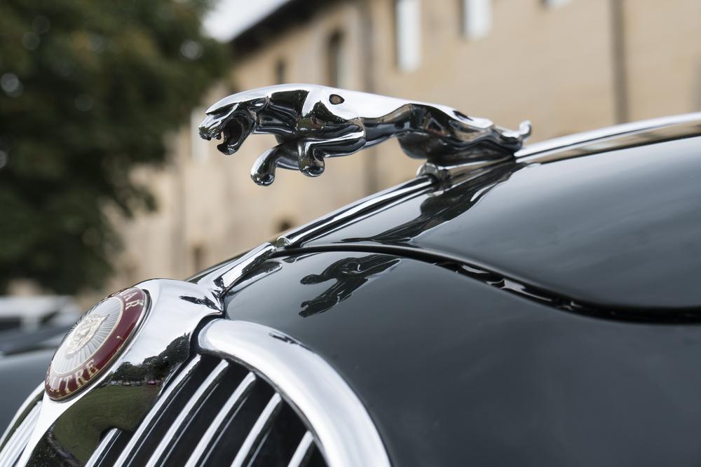 Jaguar 3.67.0 Software Update.